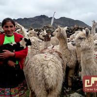 El Idioma Quechua: Qheswa Simi o Runa Simi