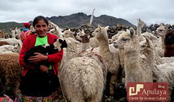 The Quechua Language: Qheswa Simi or Runa Simi
